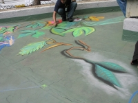 drawingonearth_3dchalkdrawing_venezuela11