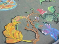 drawingonearth_3dchalkdrawing_venezuela16