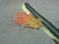drawingonearth_3dchalkdrawing_venezuela21