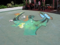 drawingonearth_3dchalkdrawing_venezuela24