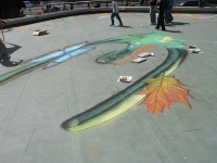 drawingonearth_3dchalkdrawing_venezuela25