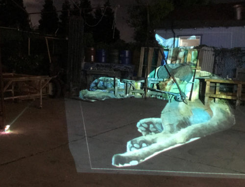 Night Projections for Earth Day Art