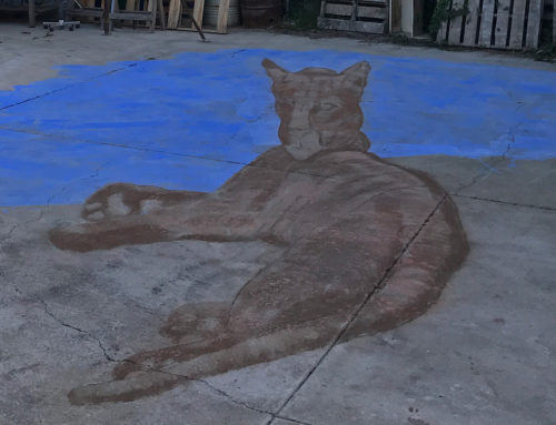 Day One – Anamorphic Chalk Drawing of Puma for Earth Day